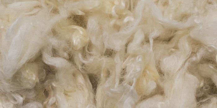 Fiocco di lana
