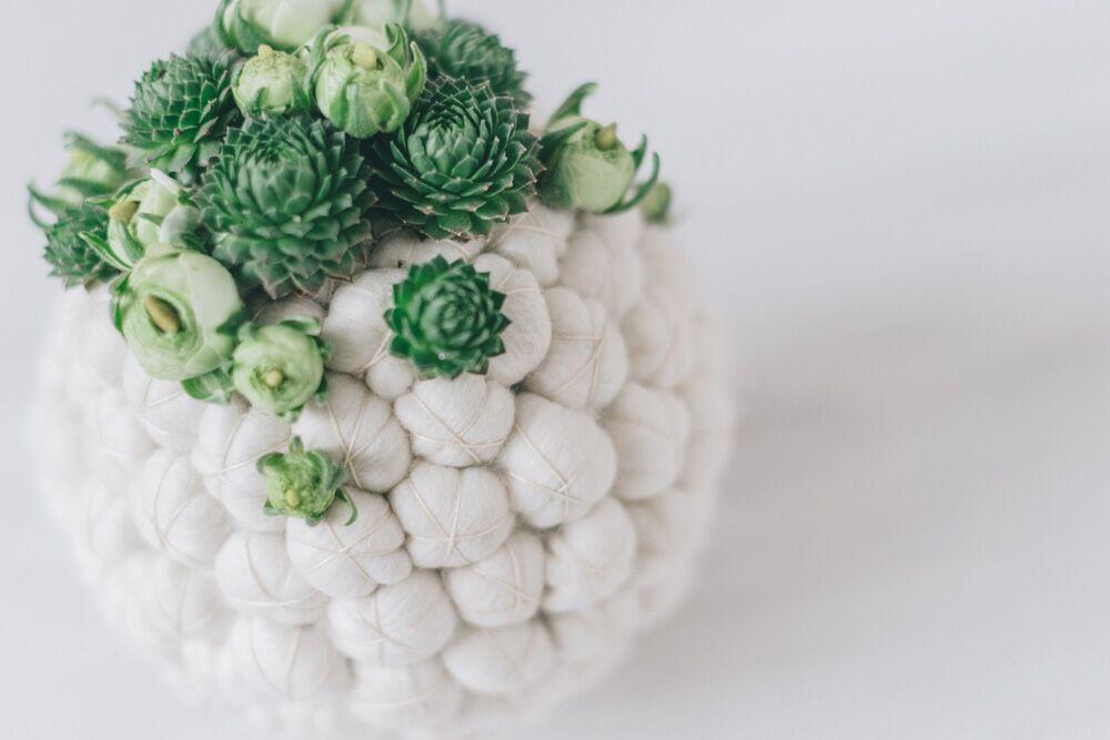floral design - sfera e piantine grasse