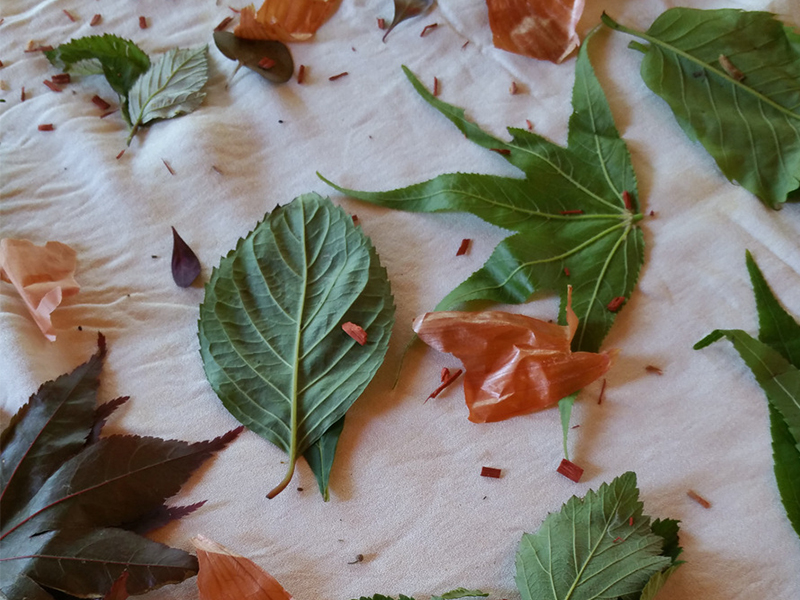 Ecoprinting - Placing leaves on viscose crepe