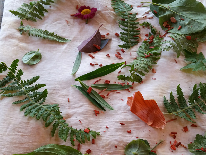 Ecoprinting - placing leaves on voile