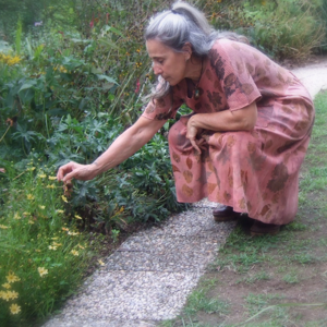 Laura Dell'Erba
